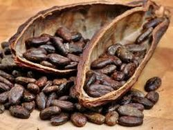 Кофе и какао падают в цене
