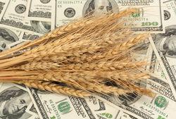 Пшеничные котировки в пятницу на биржах США особой динамики не проявили, а в Европе пошли вверх