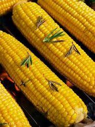 Уборка урожаев сои и кукурузы замедлились