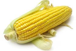 На рынке кукурузы пока без изменений - трейдеры