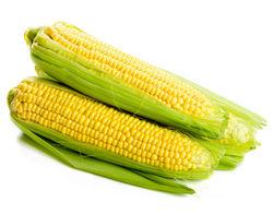 На внутреннем рынке Южной Африки упала стоимость кукурузы