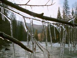 """Подмосковье """"накрыл"""" ледяной дождь. ТОП необычной погоды"""