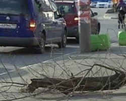 Какие последствия непогоды в Москве?