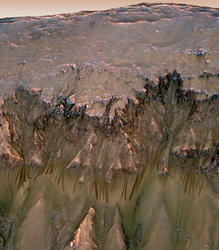 Ученые продолжают верить, что на Марсе живут бактерии