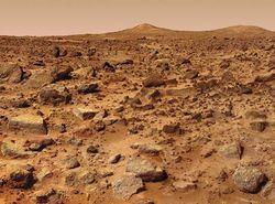 На Марсе могут жить земные микробы - ученые