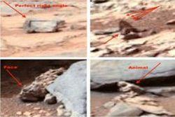 Новые удивительные данные от Curiosity – на Марсе сфотографирована птица