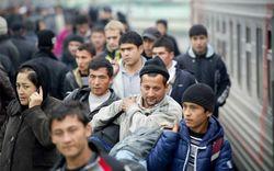 Гастарбайтеры из Узбекистана вытесняют китайцев с Дальнего Востока РФ