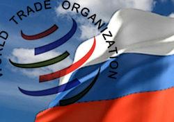 МЭР оценило прямые потери бюджета после вступления РФ в ВТО