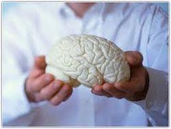 Мозг пьяниц питается алкоголем, и это мешает бросить пить – ученые