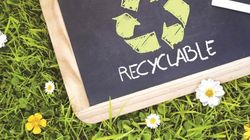 Ученые установили как мусорный микроб снизит затраты на биотопливо