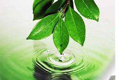 Химики США создали биотопливо из углекислого газа