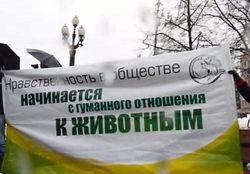 На прогулку как на войну: митинг против догхантеров в Москве