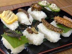 В столице Польши открылся ресторан, предлагающий блюда из насекомых