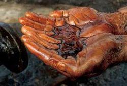 Нефть сегодня дешевеет