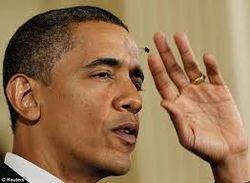Facebook ищет причину нелюбви мух к Бараку Обаме. Курьезы в прямом эфире