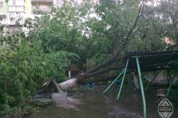 Одесса не может преодолеть стихию – число пострадавших растет