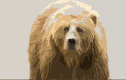 Одного из двух медведей, растерзавших жителя Камчатки, застрелили