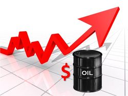 Трейдеры назвали бычьи и медвежьи факторы влияния на цену нефти