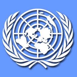спецдокладчик ООН