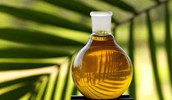 На пальмовое масло в Индии будет введёт импортный налог