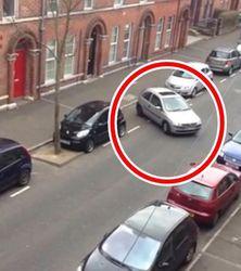 Больше 3 млн. чел. в YouTube уже посмеялось над «худшей в мире парковкой»