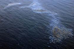 В Днепре поблизости Киева выявили нефтяное пятно