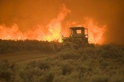пожар в Неваде