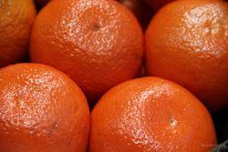 Россия начала принимать поставки грузинских апельсин и мандарин