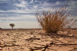 Ученые составили страшный сценарий глобального потепления