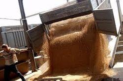 Тройка лидеров-производителей зерна не может определиться