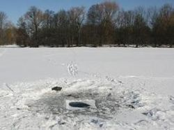 Тело пропавшей в Пермском крае девочки найдено в пруду