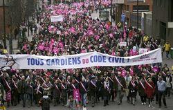 Франция вышла на улицы с протестом против легализации однополых браков