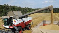 Неурожайный год в России взвинтил цены на пшеницу