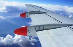 За секунды до взлета из самолета выпрыгнул пассажир