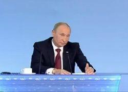 Путин: бизнесмены не должны «шакалить» по сторонам