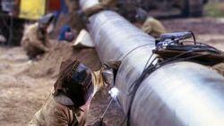Франция готова расконсервировать стратегические запасы нефти?