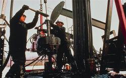 В пользовании у Роснефти 12 участков шельфа