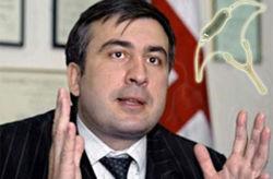 Саакашвили поведал, как модернизировал армию из «рогатки»