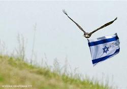В Судане поймали израильского орла-шпиона
