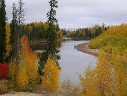 BBC News об опасности повышения температуры в Сибири