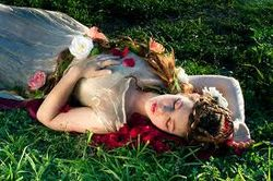 Спящая красавица - мечта клерка