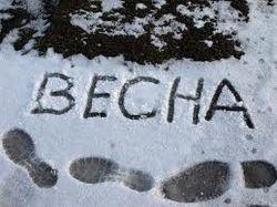 Одноклассники.ру: Москвичи в ужасе от тающего снега