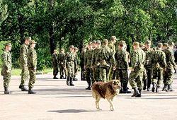 Следователи устанавливают обстоятельства гибели солдата под Иркутском