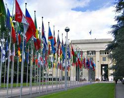 Совет ООН обсудит ситуацию в Сирии, Палестине и другие вопросы