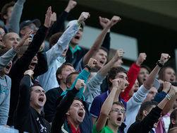 На стадион как в казино: правительство РФ готовит запреты для хулиганов