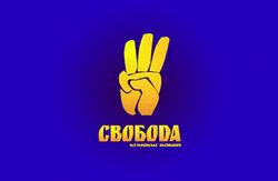 """Члены ВО """"Свобода"""" в Верховной Раде оказались с самыми скромными доходами, - СМИ"""