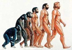 Последние открытия, подтверждающие теорию эволюции Дарвина