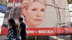 Дата рассмотрения вопроса об амнистии Тимошенко неизвестна, – член комиссии