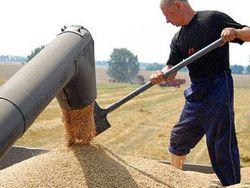 Трейдеры спешат вывезти зерно с Украины
