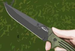 Туристу из Японии нанесли 30 ударов ножом не ради наживы